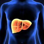 Three Types of Fatty Liver Disease
